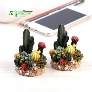 1pc Bryophytes Micro Landscapes Meaty Plants Ornaments Dolls Cactus Decorations