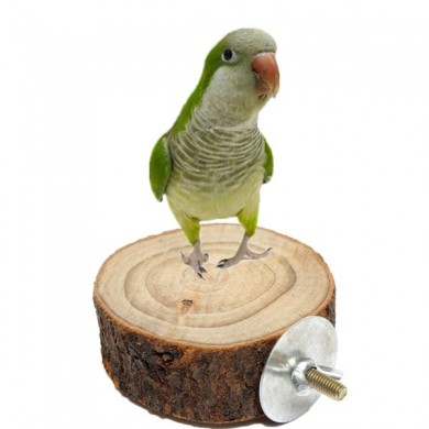 8cm Parrot Wooden Stand Pet Bird Hanging Cage Perch Platform Bird Holder
