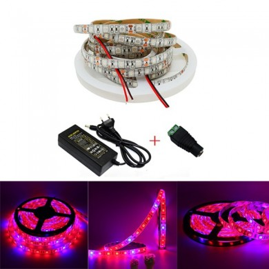 5M 3:1/4:1/5:1 Red:Blue 5050SMD 300LED Waterproof Hydroponic Plant Grow Strip Light DC12V