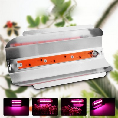 50W LED Full Spectrum Plant Flower Grow Light Waterproof Lodine Tungsten Lamp AC185-265V