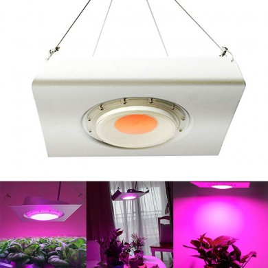 ARILUX® 50W Full Spectrum Waterproof IP65 Thunder Protection COB Plant Grow Flood Light AC220-240CV