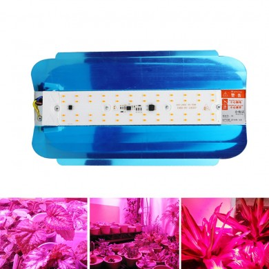 50W 100W a spettro completo impermeabile IP65 LED Fiore pianta Grow Light AC220V