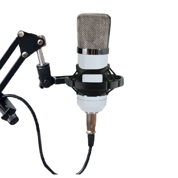 BM700 Condenser Microphone Dynamic Recording with Shock Mount