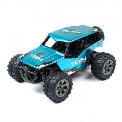 MGRC 2.4G 1/18 2WD Alloy Body RC Car High Speed Vehicle Model Buggy
