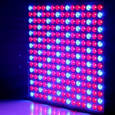 LED Grow Light 14W Rojo Azul Full Spectrum LED Planta Grow Light Hydroponics Semillas de flores Indoor
