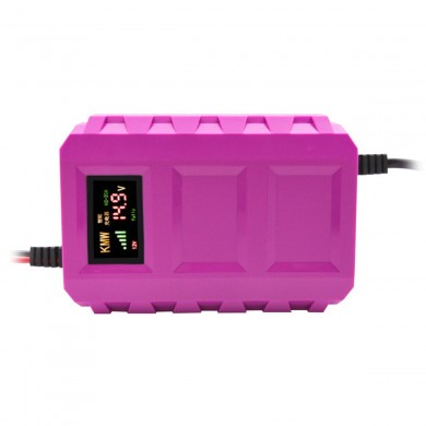US / EU 12V Pulse Repair Batteria Caricabatterie LCD Intelligent Automobile Motorcycle Car