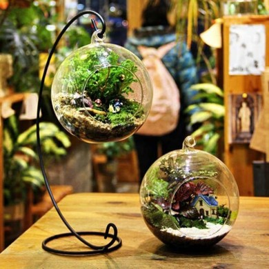 Honana HG-GD1 DIY Micro Landscape Plant Glass Hanging Ball with Iron Rack Home Decoration