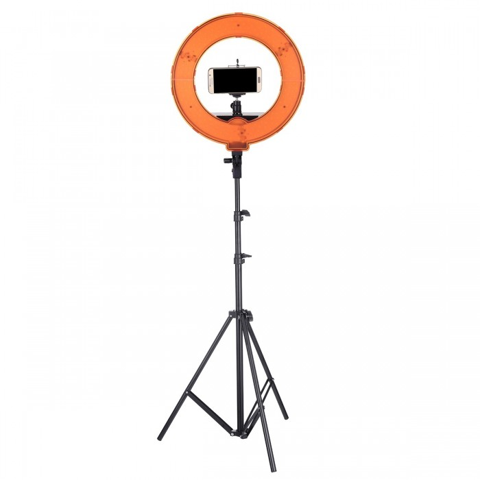 12 Inch Dimmable LED Video Ring Light with Diffuser Tripod Stand Holder for Youtube Tik Tok Live Streaming