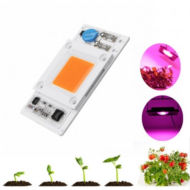 LUSTREON 50W Non-drive Thunder Protection COB LED Chip para DIY Grow Light Planta Lámpara AC180-300V