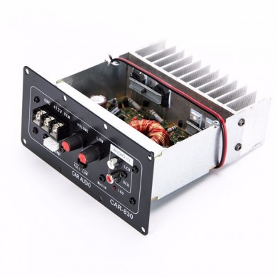 12V Hight Power Subwoofer Audio Amplifier Board Fits for Car 10 Inch Speaker